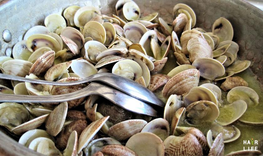 預防掉髮的含鐵食物-蛤蜊