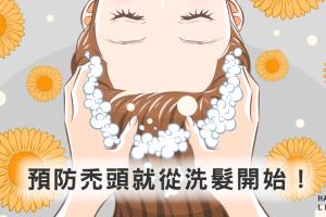 「防禿6+1招」預防禿頭就從洗髮開始!