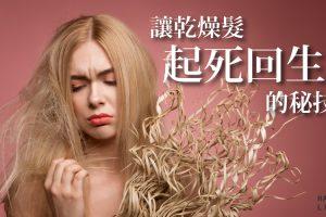讓乾燥受損髮起死回生《護髮素推薦及護髮秘訣》