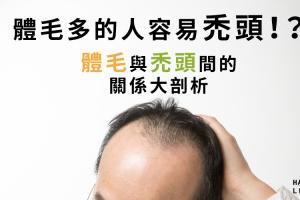 體毛多的人容易禿頭!?體毛與禿頭間的關係大剖析