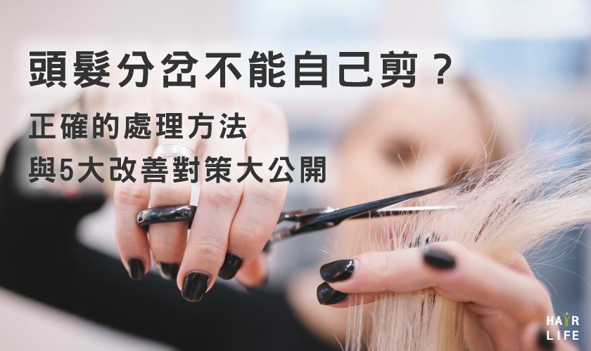 頭髮分岔不能自己剪?處理方法與改善對策