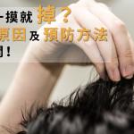 頭髮一摸就掉…?掉髮原因及預防方法大公開!