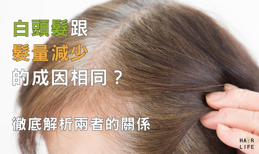 長白髮跟髮量減少出自相同原因?徹底解析兩者關聯性