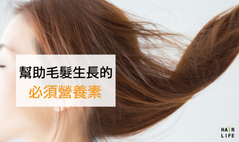 想增加髮量改善掉髮!需要的營養素有?