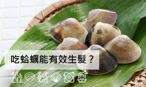 【完整解答版】吃蛤蠣能有效生髮?