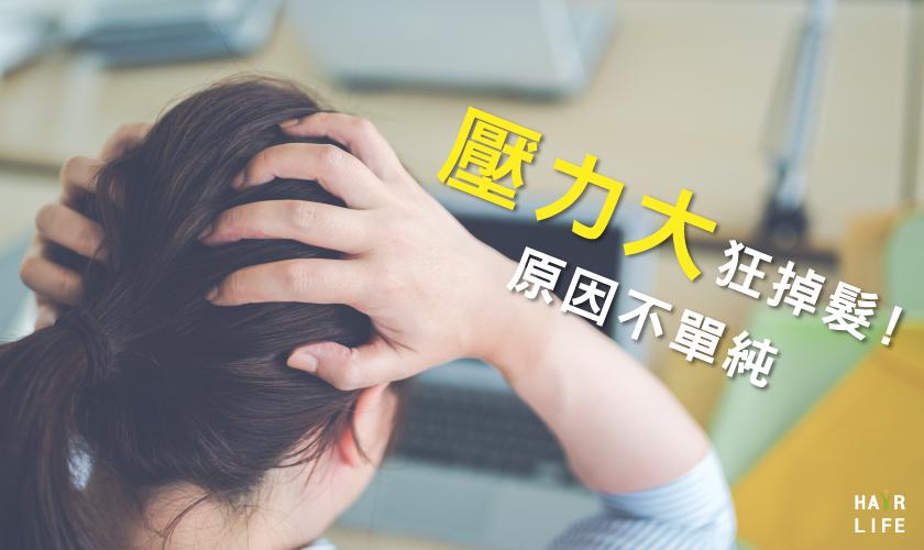 【徹底調查】考前壓力大狂掉髮?圓形禿?原因可能不單純!
