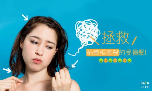 拯救枯黃稻草般的受損髮!該用什麼洗髮精?